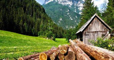 saul-ameliach-construcción-sostenible