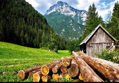 Construcción sostenible: Excelentes casas de madera
