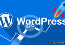 Estrategias SEO para optimizar su sitio WordPress